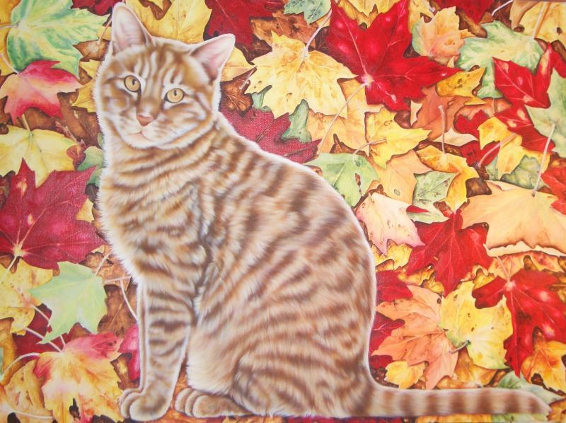 autumn tabby