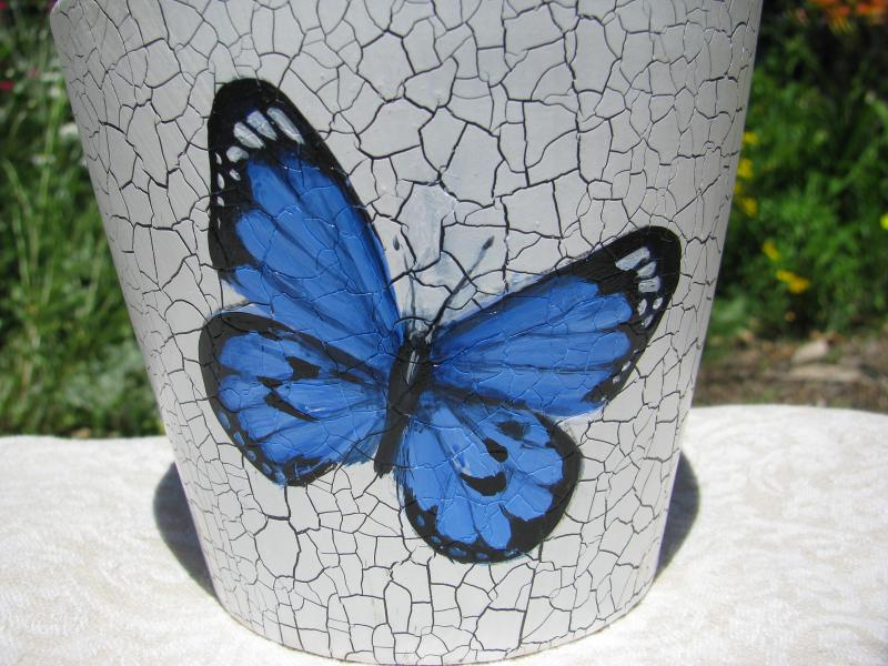 crackle butterfly