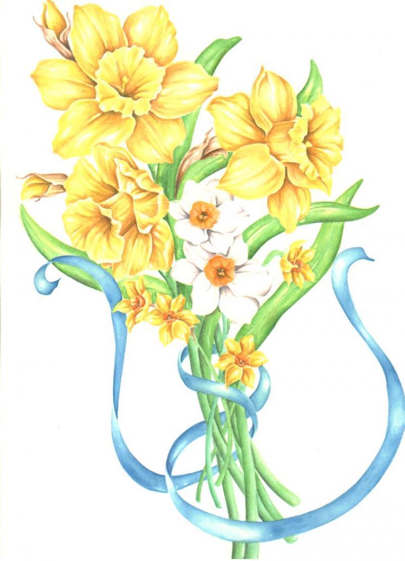 daffodil boquet